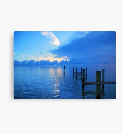 Pelican Breach Canvas Print
