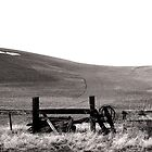 Fences and Fields by dougf