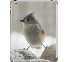So cold that I feel like I'm caught between a rock and hard place iPad Case/Skin