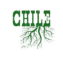 Chile Roots by surgedesigns