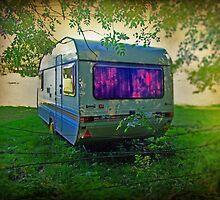 Caravan by Ray Smith