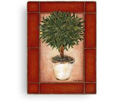 Potted Topiary - Suspended Floral Canvas Print