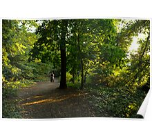 Woman in Sunlit Woodlands Poster