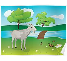 Goat and Green Lawn Poster