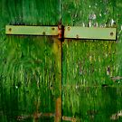 The one with the green hinged door by David Librach - DL Photography -