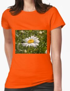 Big Chamomile 5 Womens Fitted T-Shirt