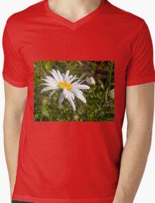 Big Chamomile 6 Mens V-Neck T-Shirt