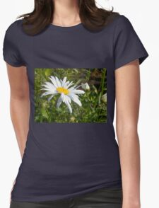 Big Chamomile 6 Womens Fitted T-Shirt