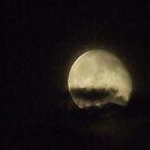 Midnight Moon by wldman68