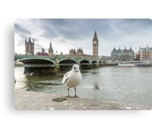 Bird on the River Thames Metal Print