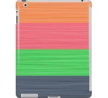 Brush Stroke Stripes: Peach, Rose, Spring Green and Steel Blue iPad Case/Skin