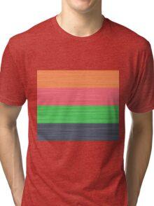 Brush Stroke Stripes: Peach, Rose, Spring Green and Steel Blue Tri-blend T-Shirt
