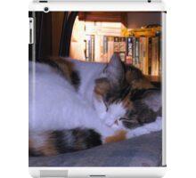 Kitty Sleep iPad Case/Skin