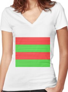 Brush Stroke Stripes: Red and Green Women's Fitted V-Neck T-Shirt