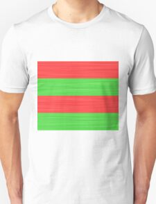 Brush Stroke Stripes: Red and Green T-Shirt