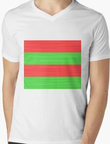 Brush Stroke Stripes: Red and Green Mens V-Neck T-Shirt