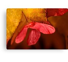Hanging on to Autumn Canvas Print