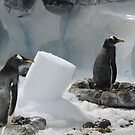 We Made It Ourselves, Honest (Penguins with Ice Column) by CreativeEm