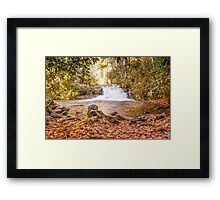 Hemlock Falls in Autumn Framed Print