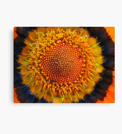 Awesome Orange Canvas Print