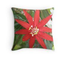 "passiflora ""Pirescii Throw Pillow"