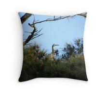 White Faced Heron Throw Pillow