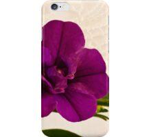 Mini Petunia  iPhone Case/Skin