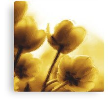 Sepia Tulips Canvas Print