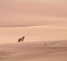 lonely by Gideon du Preez Swart