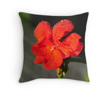 Cool Off Throw Pillow