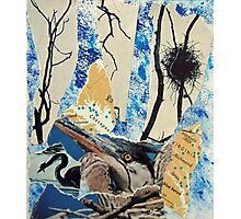 Blue Heron Torn Paper Collage Photographic Print