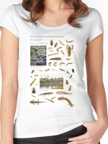 Wetland Ecosystems and Associated Animals Women's Fitted Scoop T-Shirt