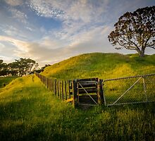 One Tree Hill (2) by Ian Rushton