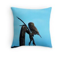 Late afternoon dusk luck Throw Pillow