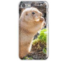 Prairie Dog Eating. iPhone Case/Skin