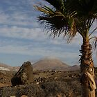 Lanzarote by David O'Riordan