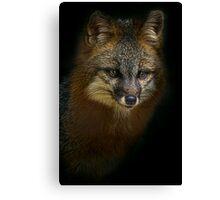 Fox Power Canvas Print