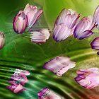 Remember the Spring by LudaNayvelt