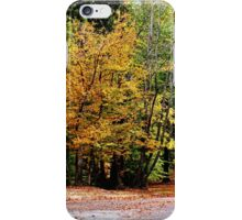 Autumn in Texas iPhone Case/Skin