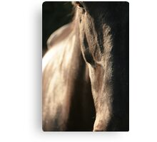 Power Beautified Canvas Print