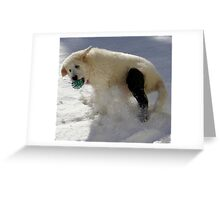 Dealing with a Fractured Leg. Greeting Card