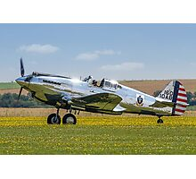 Curtiss P-40C 41-13357 N80FR out in the buttercups Photographic Print