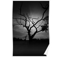 Spooky tree Poster