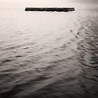 Floating Dock by Daniel Smith