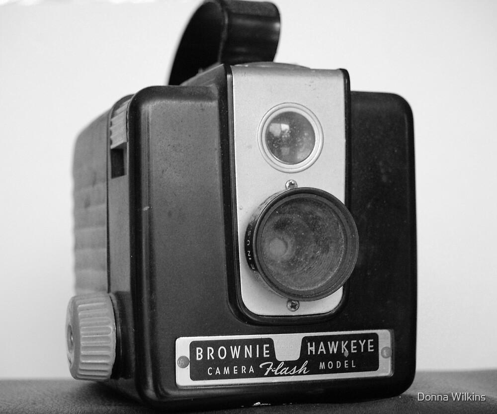 Brownie Hawkeye by Donna Adamski