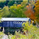 Fall Countryside In Vermont by Deborah  Benoit