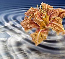 Liquid Flower IV by EbelArt