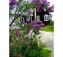 Hidden Cottage Photographic Print