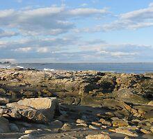 Beach by Sarah Reeve