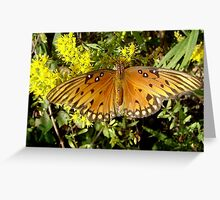 Butterfly on Goldenrod Plant Greeting Card